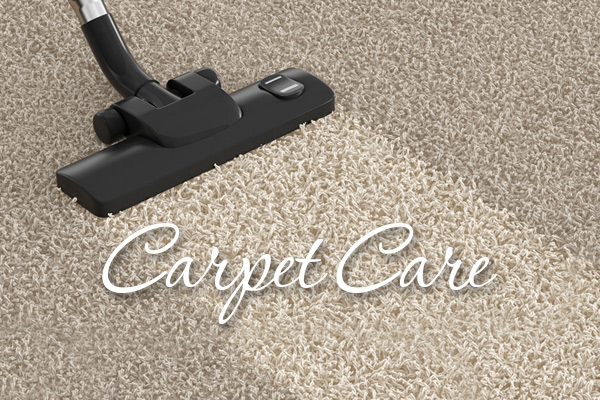 Carpet Care Proper Care Instructions From Floors To Go